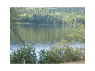"Photo 9: LOT 13 EAGLE CREEK Road in Canim Lake: Canim/Mahood Lake Land for sale in ""HAWKINS LAKE"" (100 Mile House (Zone 10))  : MLS®# N226700"