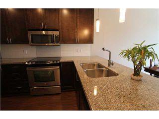 "Photo 6: 415 2368 MARPOLE Avenue in Port Coquitlam: Central Pt Coquitlam Condo for sale in ""RIVERROCK LANDING"" : MLS®# V1019170"