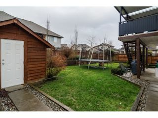 Photo 20: 2836 BOXCAR STREET in Abbotsford: House for sale : MLS®# R2024003