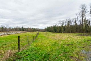 Photo 17: 932 240 STREET in Langley: Otter District House for sale : MLS®# R2232971