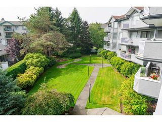 """Photo 19: 204 5375 205 Street in Langley: Langley City Condo for sale in """"Glenmont Park"""" : MLS®# R2500306"""