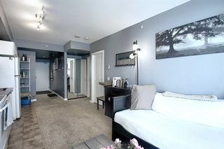 Photo 6: 1002 3830 Brentwood Road NW in Calgary: Brentwood Apartment for sale : MLS®# A1044549