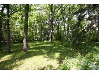 Photo 16: 84 River Road in WINNIPEG: St Vital Residential for sale (South East Winnipeg)  : MLS®# 1212446