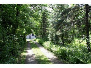 Photo 18: 84 River Road in WINNIPEG: St Vital Residential for sale (South East Winnipeg)  : MLS®# 1212446