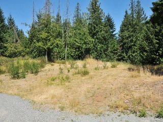 Photo 13: 2039 Ingot Dr in COBBLE HILL: ML Shawnigan House for sale (Malahat & Area)  : MLS®# 677950