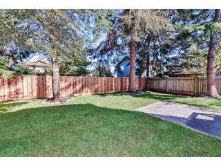Photo 20: 1304 DUNCAN DR in Tsawwassen: Beach Grove House for sale : MLS®# V1089147