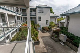 Photo 14: 305 11519 BURNETT STREET in Maple Ridge: East Central Condo for sale : MLS®# R2022198