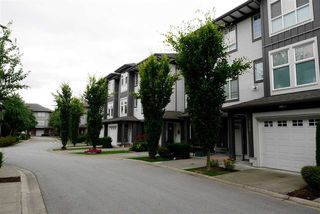 Photo 17: 113 18777 68A AVENUE in Langley: Clayton Townhouse for sale (Cloverdale)  : MLS®# R2084636