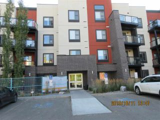 Main Photo: 347 308 Ambleside Link SW in Edmonton: Zone 56 Condo for sale : MLS®# E4180670