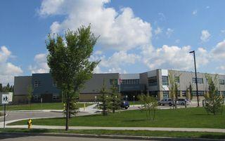 Photo 39: 11826 13A Avenue in Edmonton: Zone 55 House for sale : MLS®# E4183343