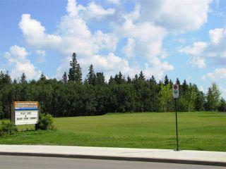 Photo 37: 11826 13A Avenue in Edmonton: Zone 55 House for sale : MLS®# E4183343