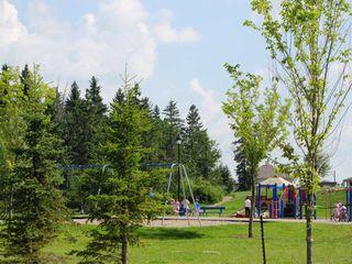Photo 38: 11826 13A Avenue in Edmonton: Zone 55 House for sale : MLS®# E4183343