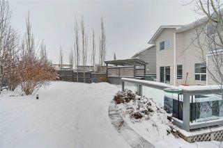 Photo 29: 11826 13A Avenue in Edmonton: Zone 55 House for sale : MLS®# E4183343