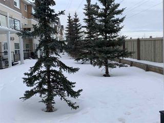 Photo 9: 26 3010 33 Avenue in Edmonton: Zone 30 Townhouse for sale : MLS®# E4188530