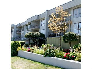 Photo 12: 213 808 E 8TH Avenue in Vancouver: Mount Pleasant VE Condo for sale (Vancouver East)  : MLS®# V1024076