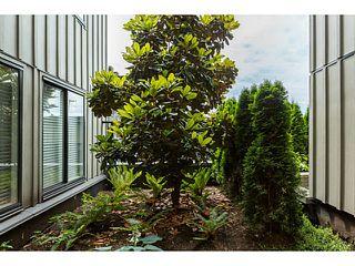 Photo 14: # 201 4372 FRASER ST in Vancouver: Fraser VE Condo for sale (Vancouver East)  : MLS®# V1127230