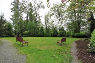 Photo 18: 411 11665 HANEY BYPASS in Maple Ridge: East Central Condo for sale : MLS®# R2263527