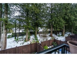 Photo 18: 19 2950 LEFEUVRE ROAD in Abbotsford: Aberdeen Townhouse for sale : MLS®# R2341349