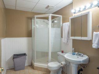 Photo 17: 11485 207 Street in Maple Ridge: Southwest Maple Ridge House for sale : MLS®# R2414171