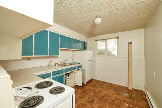 Photo 11: 940 30 Avenue NW in Calgary: Cambrian Heights Detached for sale : MLS®# C4300511