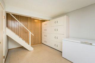 Photo 25: 7811 145 Avenue in Edmonton: Zone 02 House for sale : MLS®# E4208612
