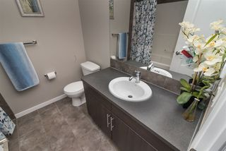 Photo 13: 2128 74 Street SW in Edmonton: Zone 53 House for sale : MLS®# E4213080