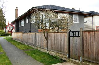 Photo 51: 4204 Frances Street in Burnaby: Willingdon Heights House for sale (Burnaby North)  : MLS®# V940060