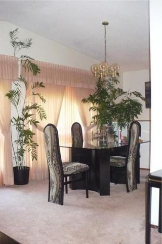 Photo 7: 143 TALLMAN ST in Winnipeg: Residential for sale (Canada)  : MLS®# 1013378