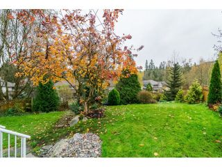 Photo 19: 24113 MCCLURE DRIVE in MAPLE RIDGE: Albion House for sale (Maple Ridge)  : MLS®# R2015650