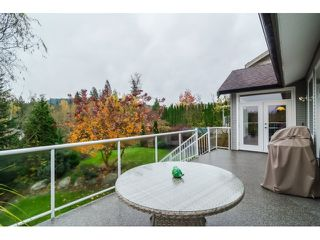 Photo 17: 24113 MCCLURE DRIVE in MAPLE RIDGE: Albion House for sale (Maple Ridge)  : MLS®# R2015650