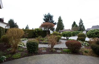 Photo 3: 429 Lakeview Street in Coquitlam: Central Coquitlam House for sale : MLS®# R2037527
