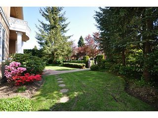 Photo 11: 1223 W 32ND Avenue in Vancouver: Shaughnessy House for sale (Vancouver West)  : MLS®# V1062374