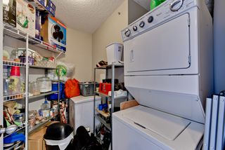 Photo 19: 1422 9363 Simpson Drive in Edmonton: South Terwillegar Condo for sale : MLS®# E4148861
