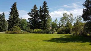 Photo 4: 9336 83 Street in Edmonton: Zone 18 Vacant Lot for sale : MLS®# E4170885