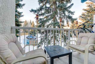 Photo 21: 214 5730 RIVERBEND Road in Edmonton: Zone 14 Condo for sale : MLS®# E4183004