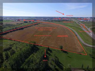 Photo 3: 53211 RGE RD 263: Rural Parkland County Rural Land/Vacant Lot for sale : MLS®# E4183809