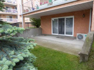 Photo 19: 102 10945 21 Avenue NW in Edmonton: Zone 16 Condo for sale : MLS®# E4202404