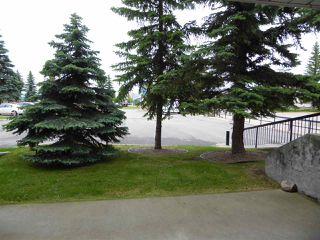 Photo 21: 102 10945 21 Avenue NW in Edmonton: Zone 16 Condo for sale : MLS®# E4202404