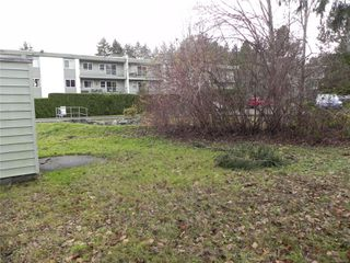 Photo 5: 210 Back Rd in : CV Courtenay East House for sale (Comox Valley)  : MLS®# 860950