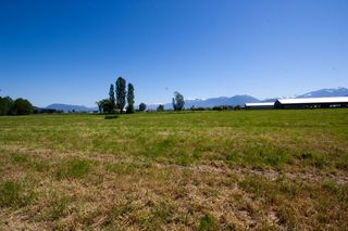 Photo 36: 42975 SOUTH SUMAS Road in Sardis: Greendale Chilliwack House for sale : MLS®# H1301840