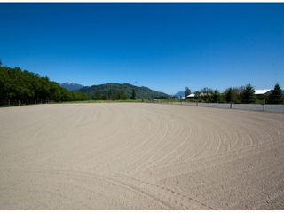 Photo 30: 42975 SOUTH SUMAS Road in Sardis: Greendale Chilliwack House for sale : MLS®# H1301840
