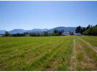 Photo 35: 42975 SOUTH SUMAS Road in Sardis: Greendale Chilliwack House for sale : MLS®# H1301840