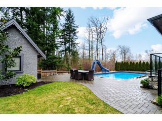 Photo 17: 2911 146 ST in Surrey: Elgin Chantrell House for sale (South Surrey White Rock)  : MLS®# F1402324