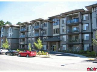 "Photo 10: 401 33338 MAYFAIR Avenue in Abbotsford: Central Abbotsford Condo for sale in ""THE STIRLING ON MAYFAIR"" : MLS®# F1420645"