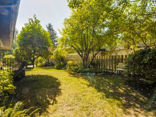 Photo 4: 1975 Alderlynn Drive in North Vancouver: Westlynn House for sale