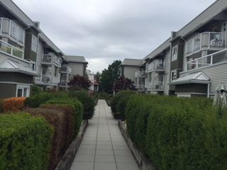 Photo 2: 204 4738 53 STREET in Delta: Delta Manor Condo for sale (Ladner)  : MLS®# R2083795
