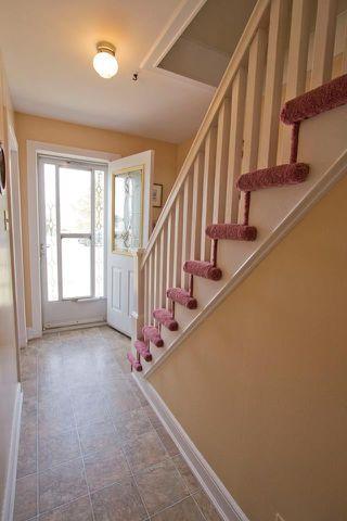 Photo 6: 16 Copp Avenue: Sackville House for sale : MLS®# M104111