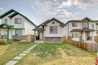 Photo 35: 288 SADDLEMEAD RD NE in Calgary: Saddle Ridge House for sale : MLS®# C4201588