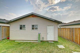 Photo 31: 288 SADDLEMEAD RD NE in Calgary: Saddle Ridge House for sale : MLS®# C4201588
