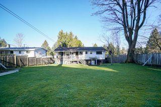 Photo 20: 12732 98 AVENUE in Surrey: Cedar Hills House for sale (North Surrey)  : MLS®# R2332119